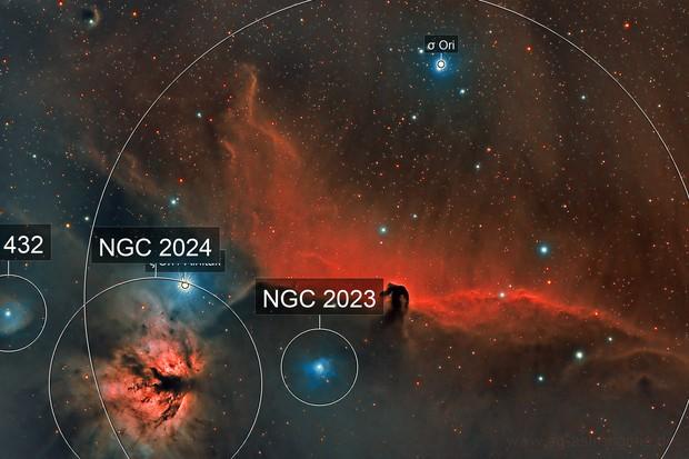 Horsehead Nebula (IC 434) and Flame Nebula (NGC 2024)