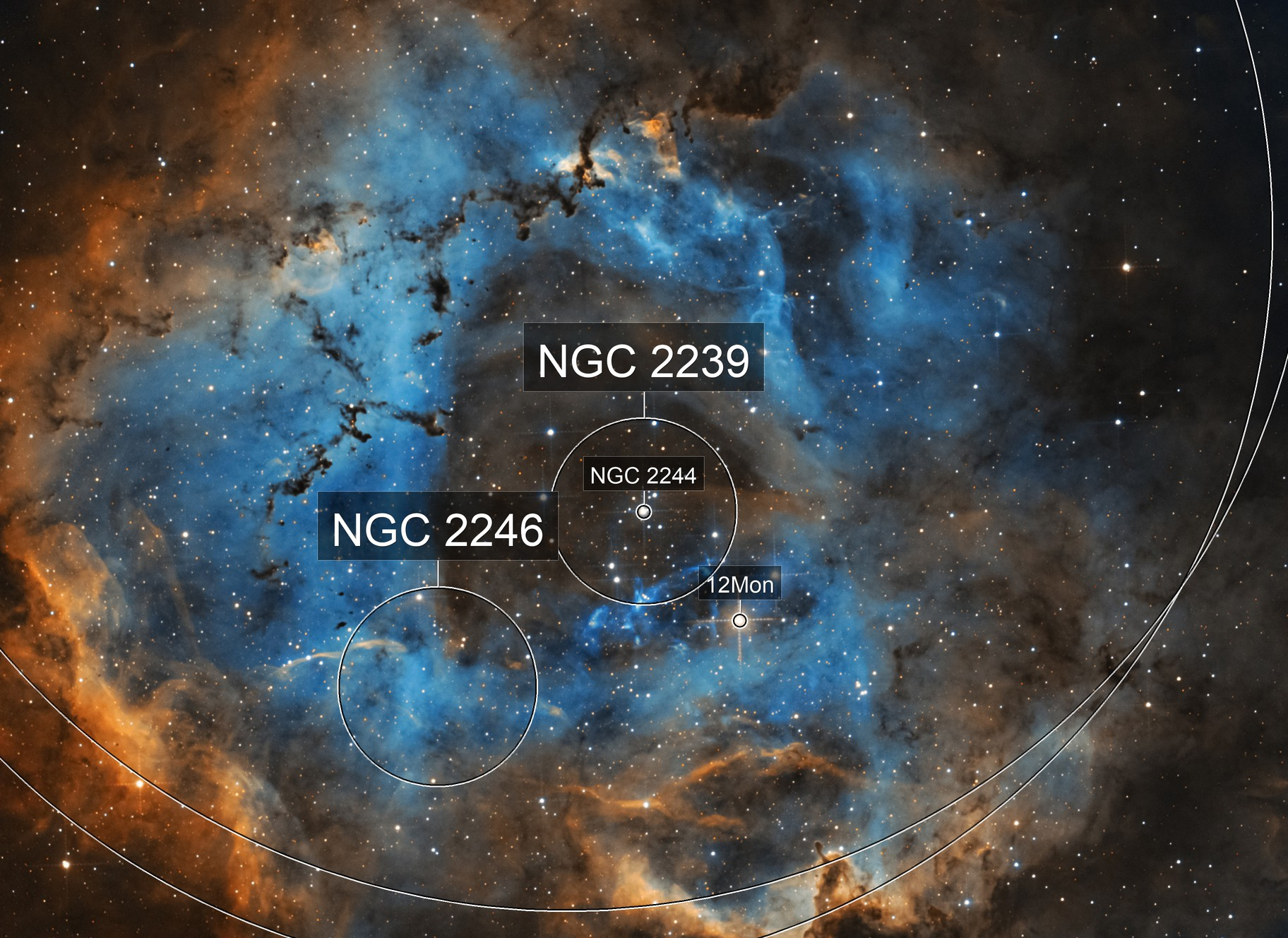 NGC 2237 Rosette Nebula SHO Hubble