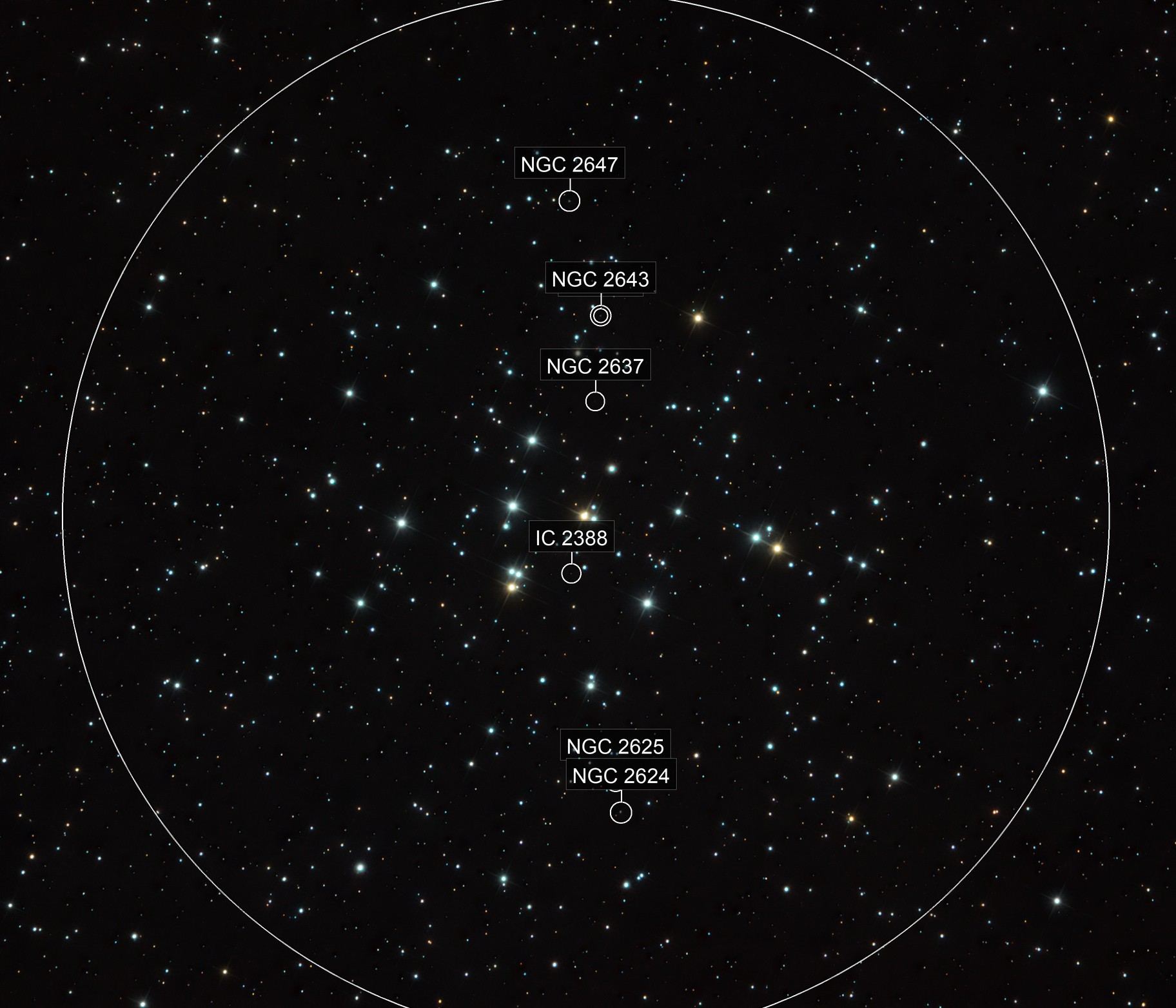 Beehive Cluster, M44