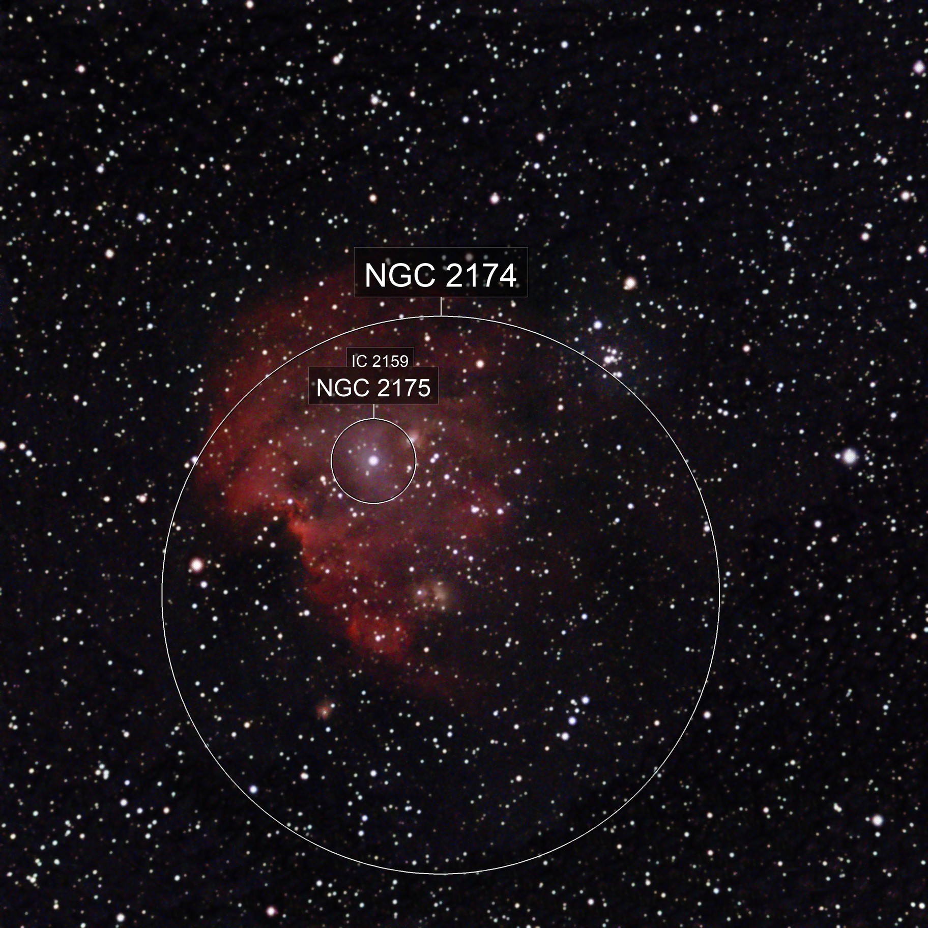 First attempt at NGC2174.