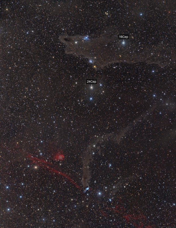 Cepheus is a busy place.