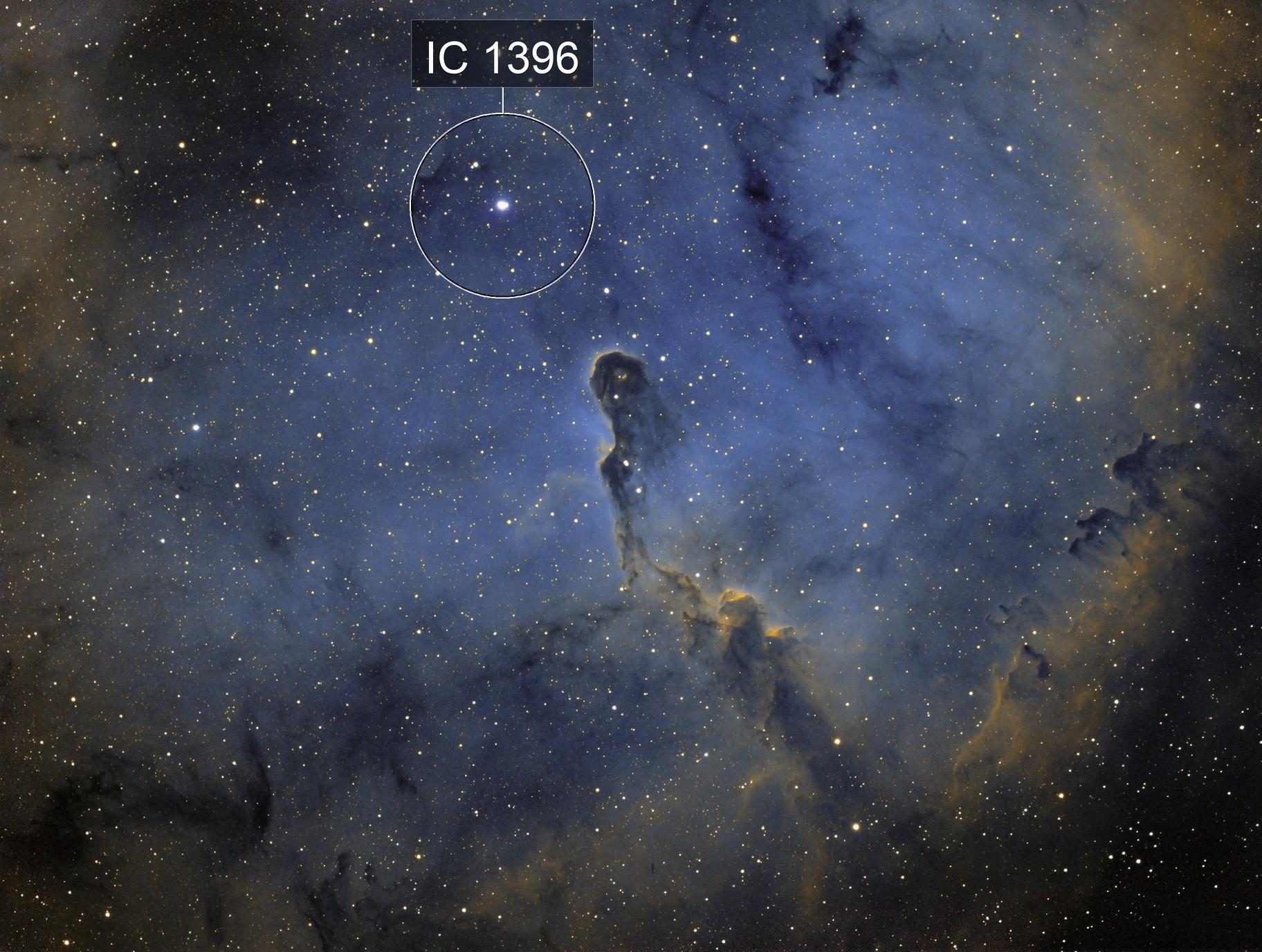 Elephant's Trunk Nebula in Hubble colours