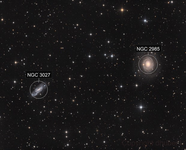 NGC 2985 and friends