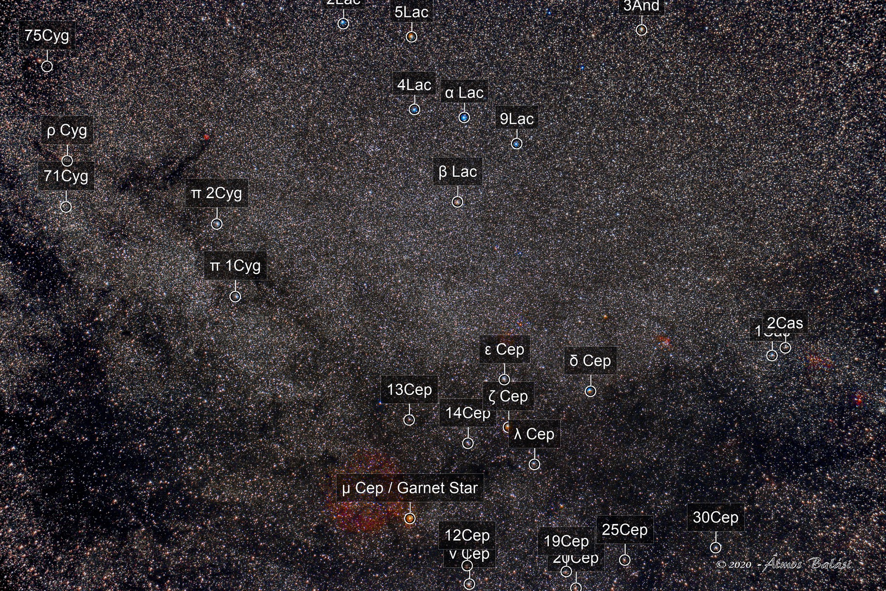 IC1396 and surroundings - wide field