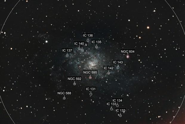 Triangulum Galaxy With 8se & ASI071MC Pro