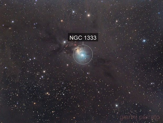 NGC1333 - polvere di stelle!