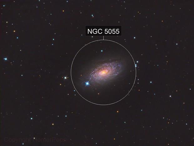 Messier 63 Sunflower