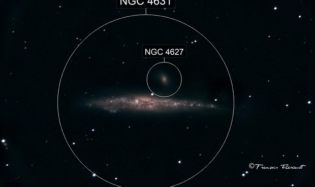 NGC 4631 Whale Galaxy in Canes Venatici