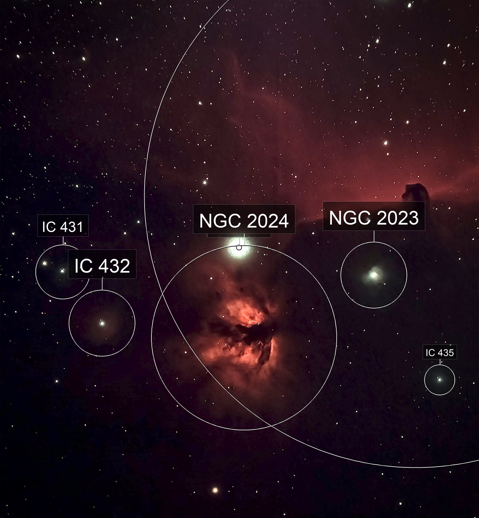 Flame and Horsehead Nebulas