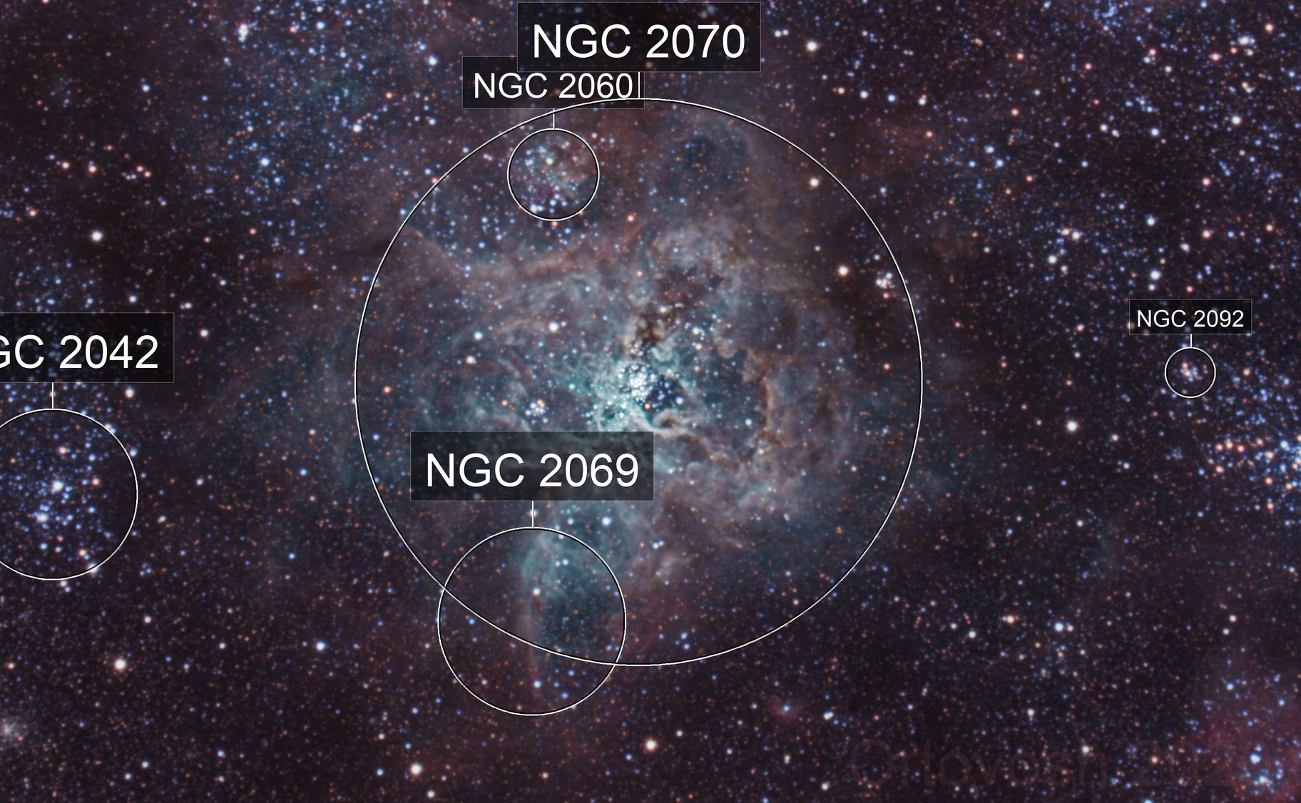 Tarantula Nebula - NGC2070