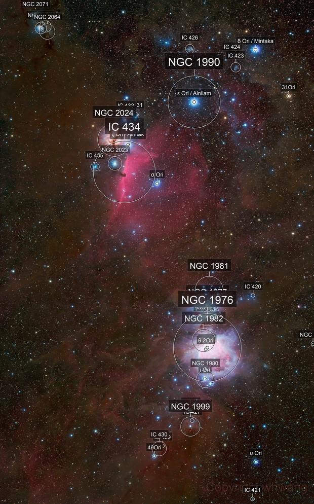 M42 and Horse Head Nebula