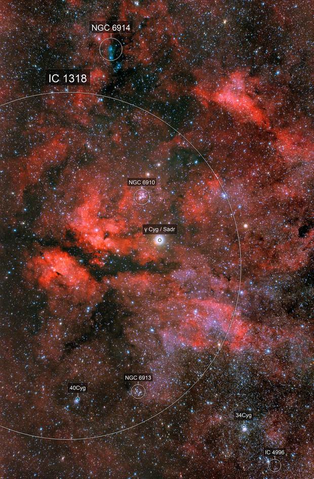 γ Cygni and IC 1318 region