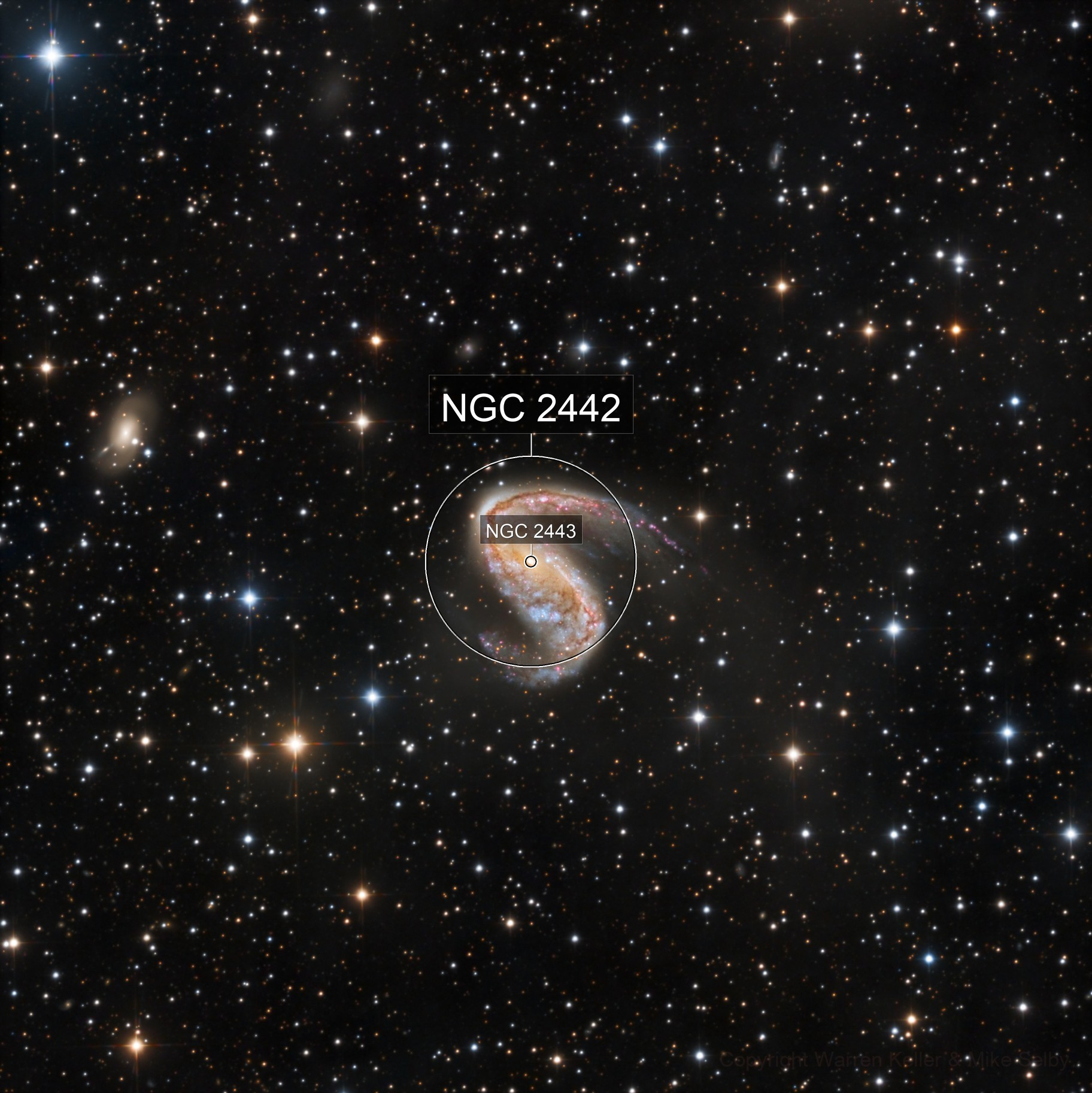 NGC 2442-3 'Meat Hook'
