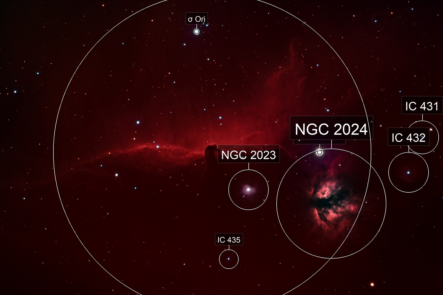 IC434 - Horsehead Nebula and Flame Nebula (NGC 2024)