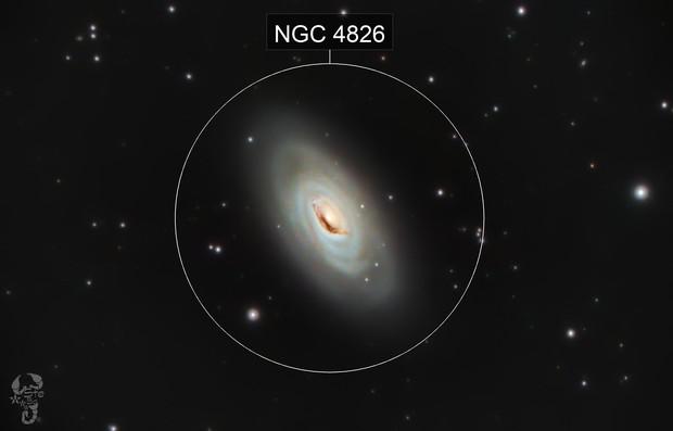 Messier 100 - Black Eye Galaxy