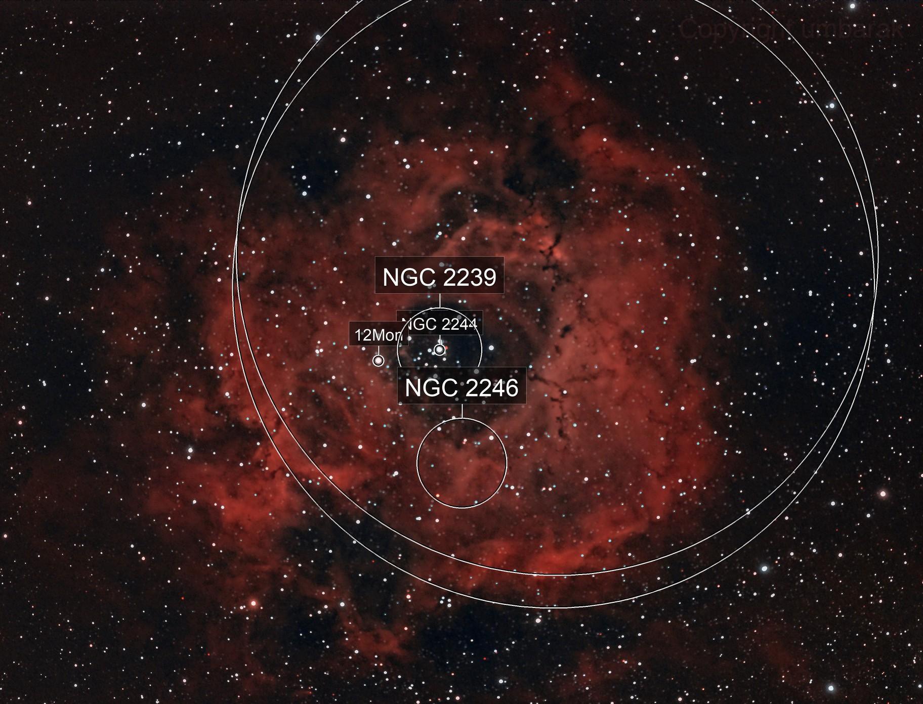 NGC2244-Rosetta Nebula