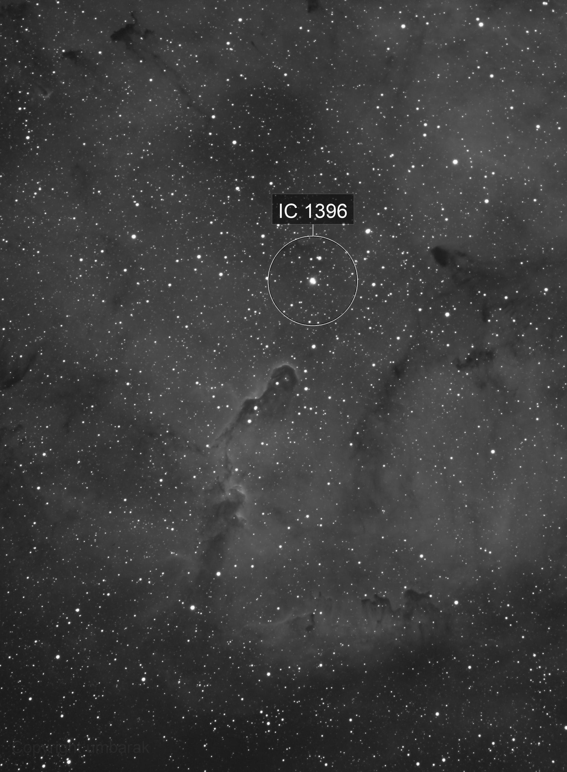 IC1396-Elephant Trunk Nebula HA