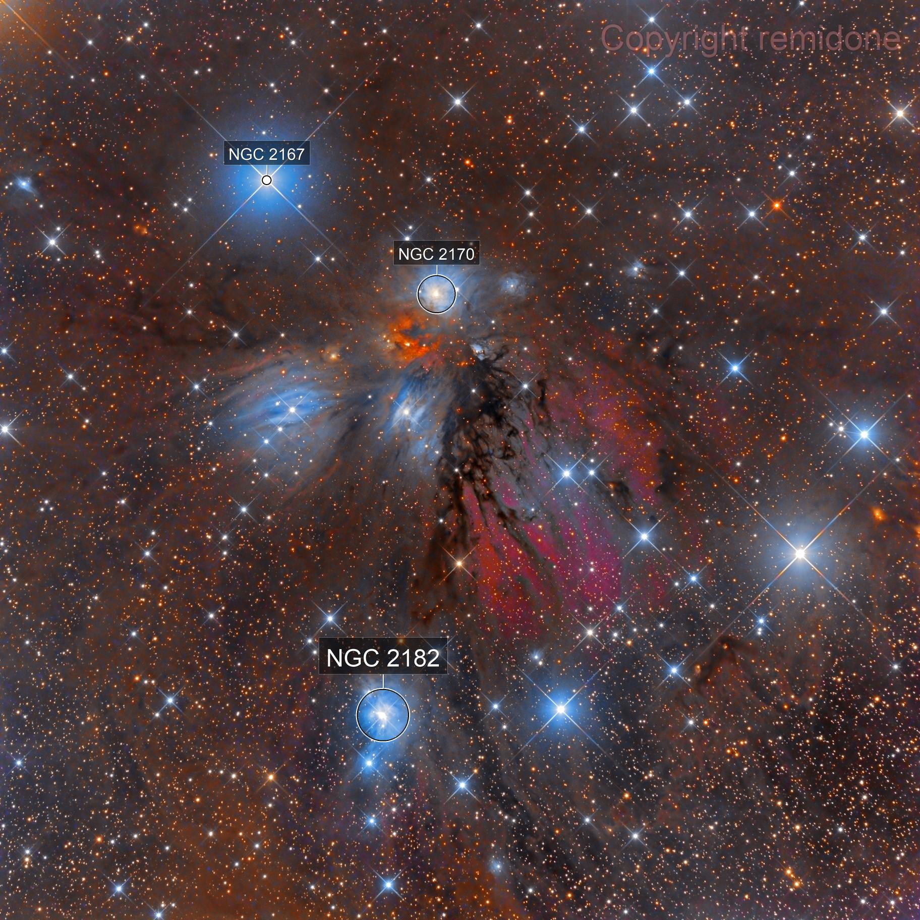 NGC 2170 - Angel Nebula Still Life