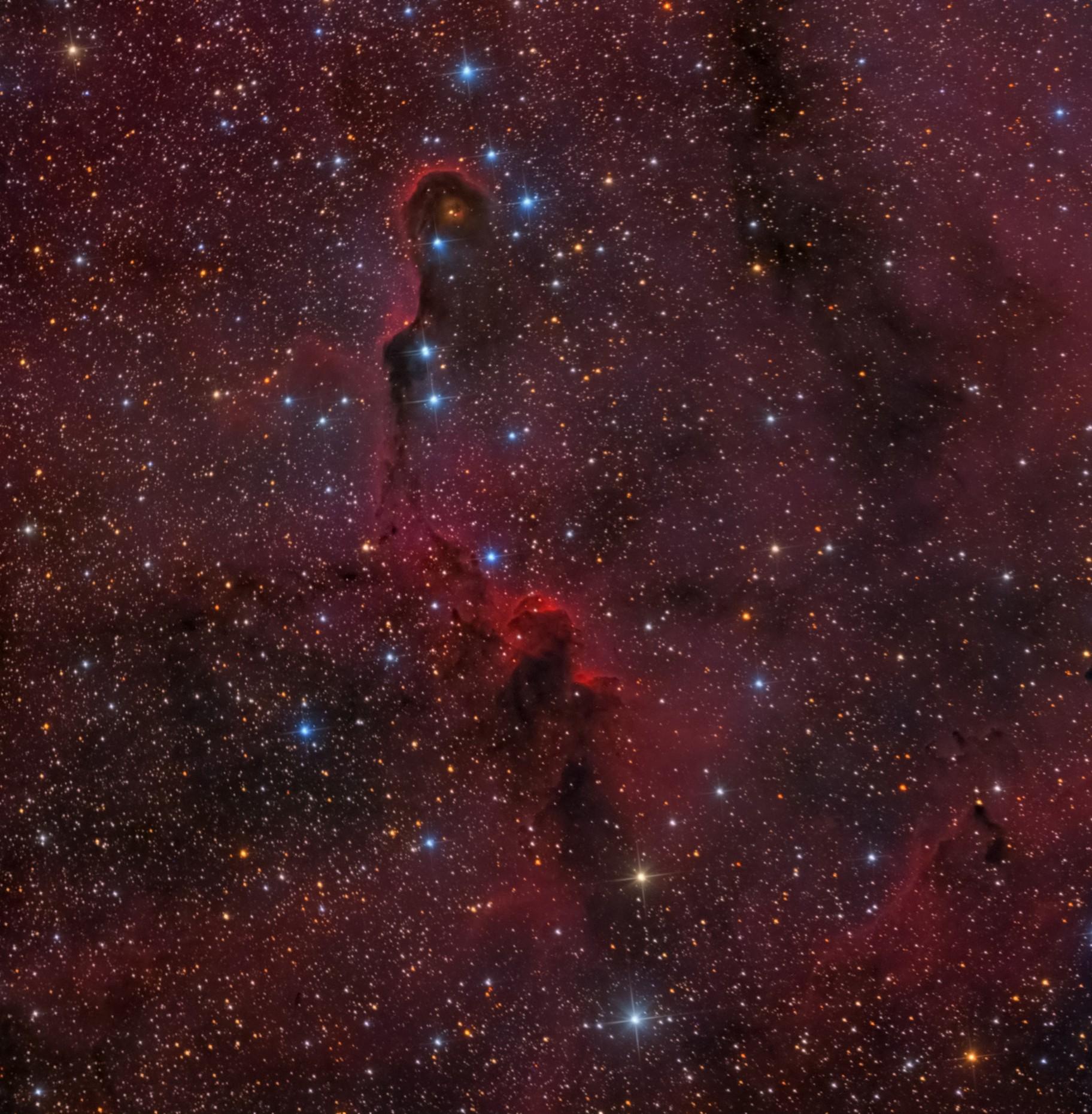 Elephant Trunk nebula - vdB 142