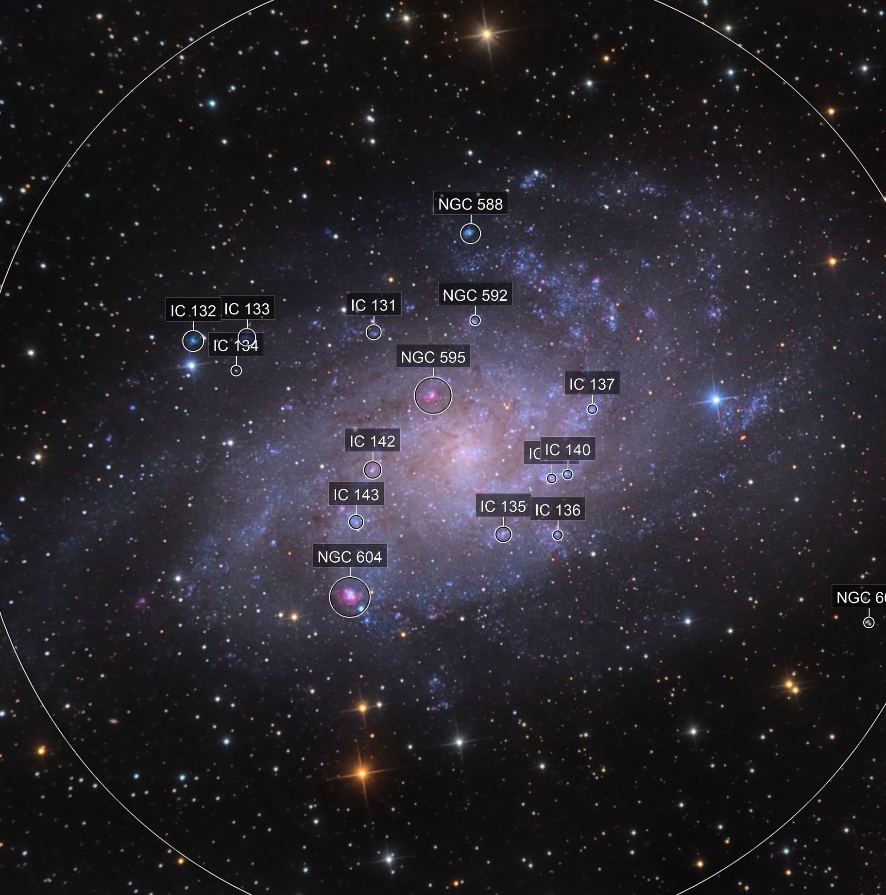M 33 - The Triangulum Galaxy