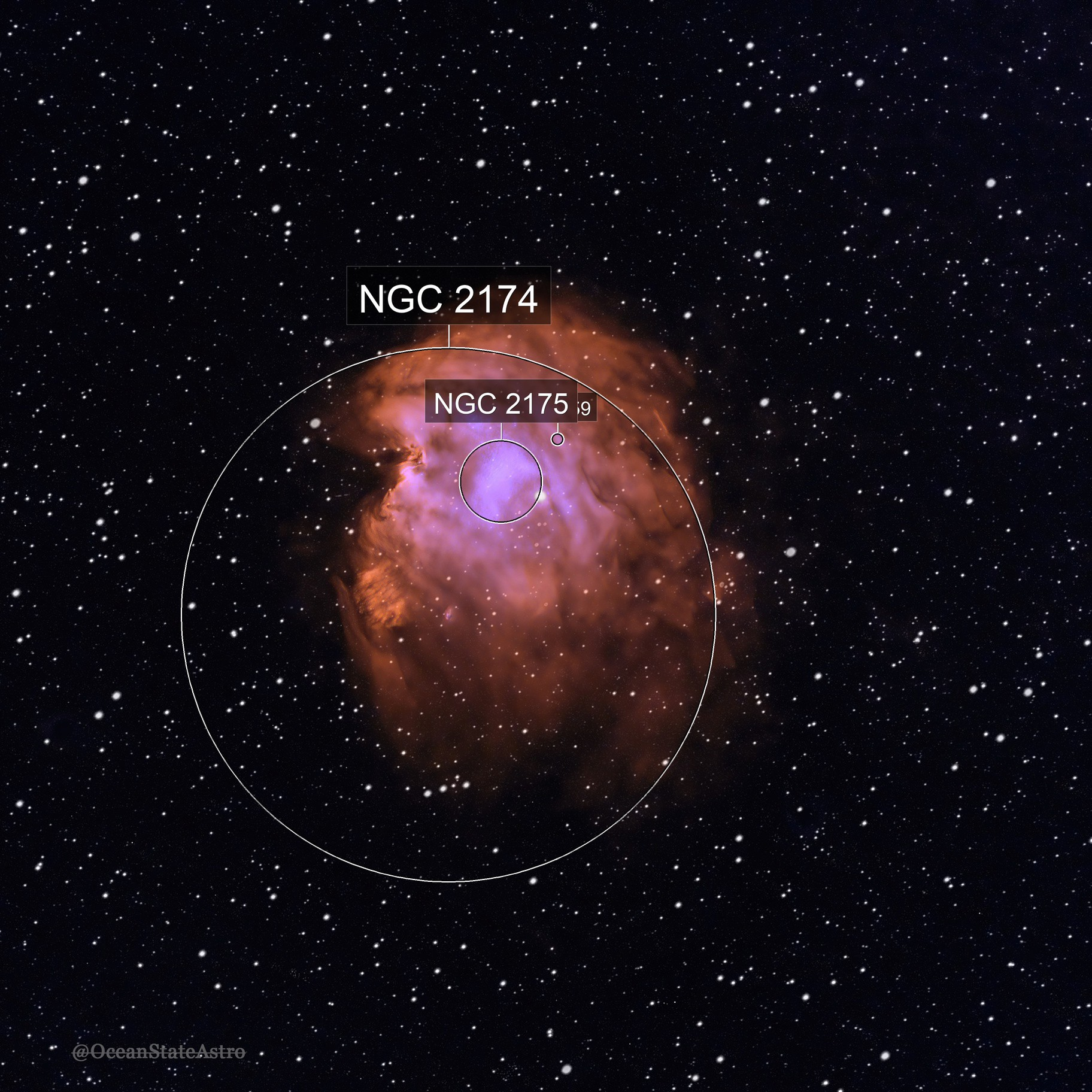 The Monkey Head Nebula