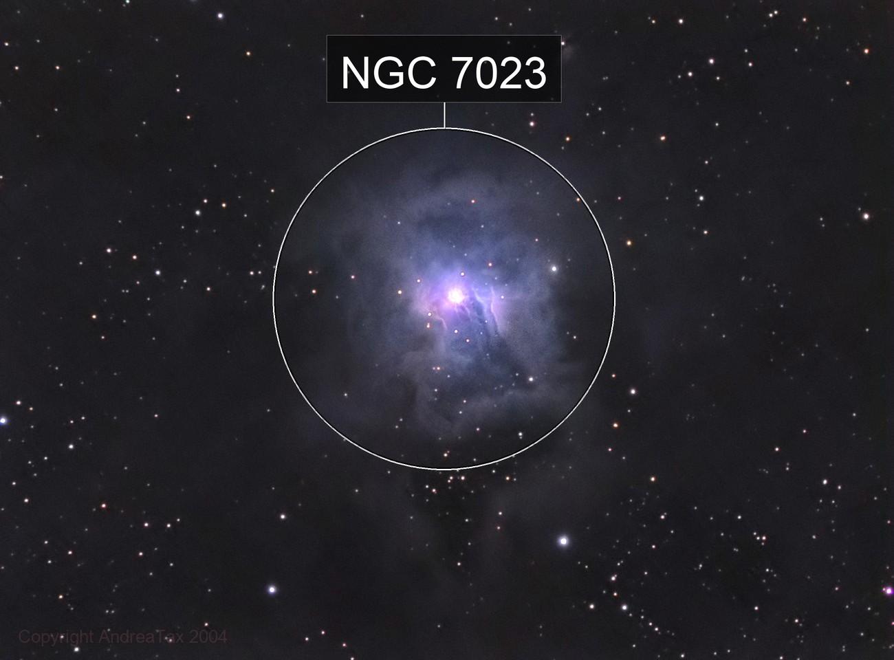 NGC7023 LRGB  - The Iris Nebula