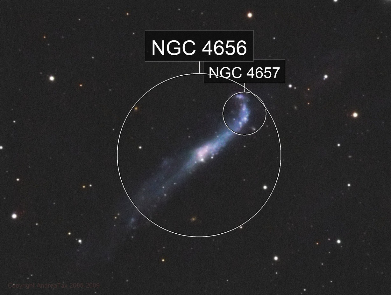 NGC4656 LRGB - The Hockey Club Galaxy