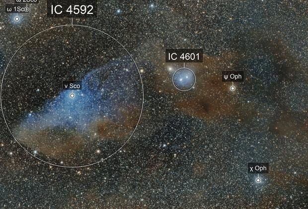 """IC 4592 """"Blue Horsehead"""""""