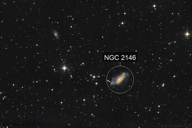 NGC 2146 - widefield