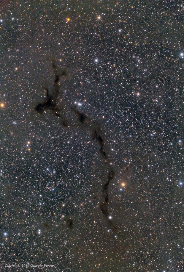"Barnard 150 ""The Seahorse Nebula"""