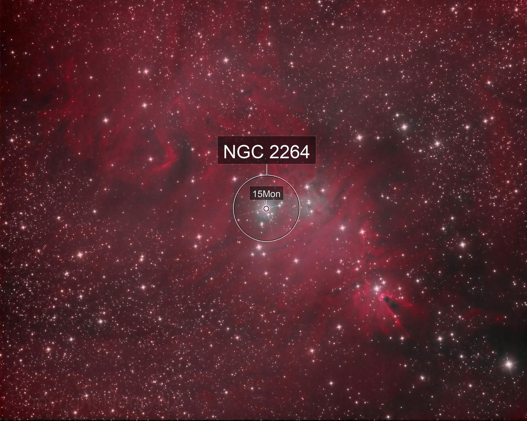 Cone Nebula and Christmas Tree Cluster