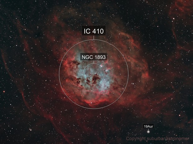 IC 410 Tadpoles