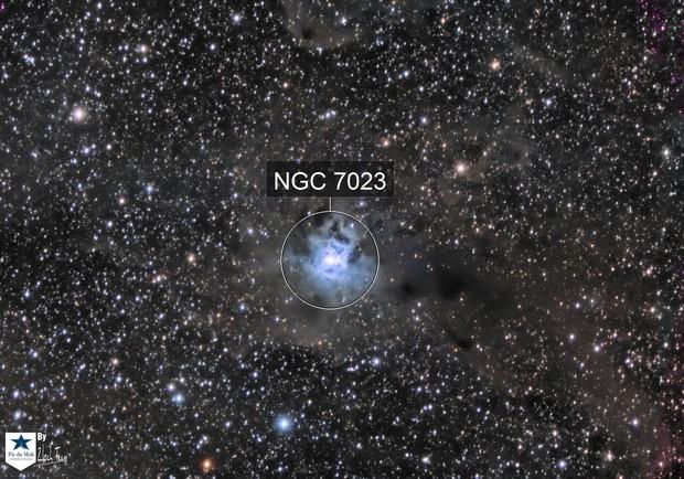 NGC7023 - La nebuleuse de l'Iris