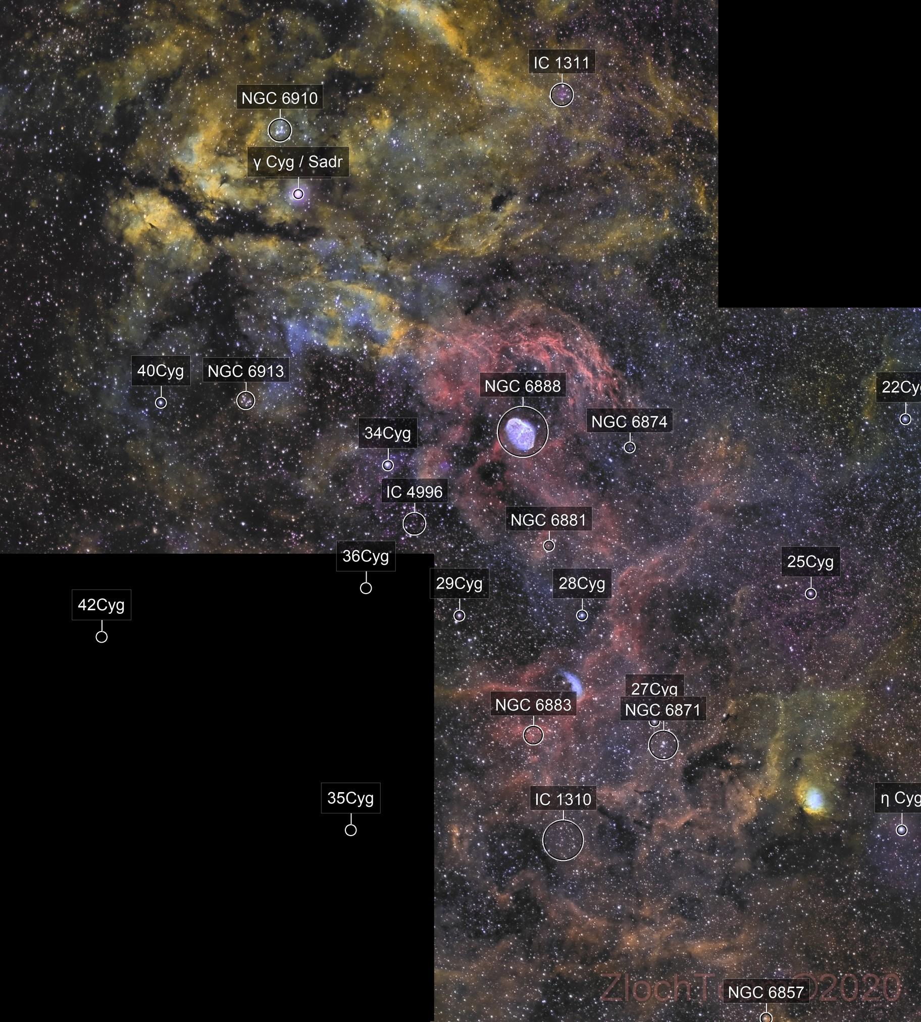 Mosaïque : quelques joyaux du Cygne