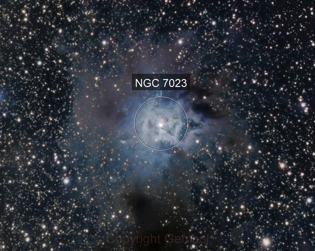 Iris Nebula. NGC 7023