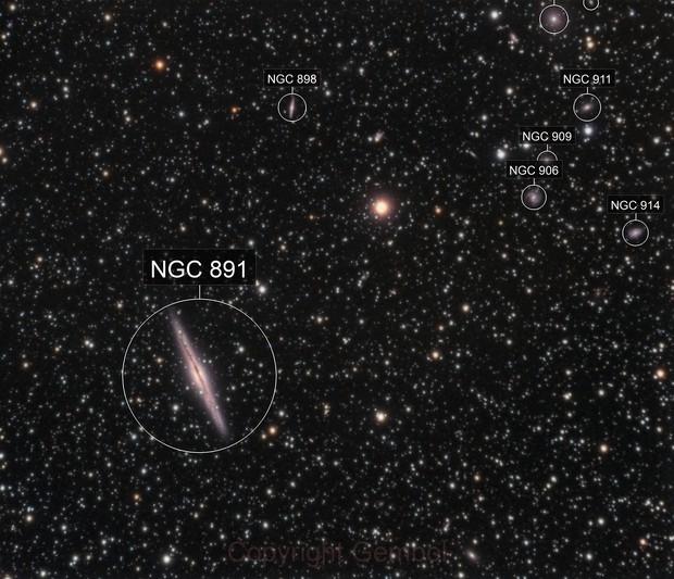NGC891 and companions