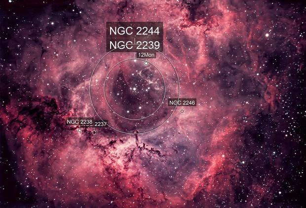 My Valentines version of the Rosette Nebula