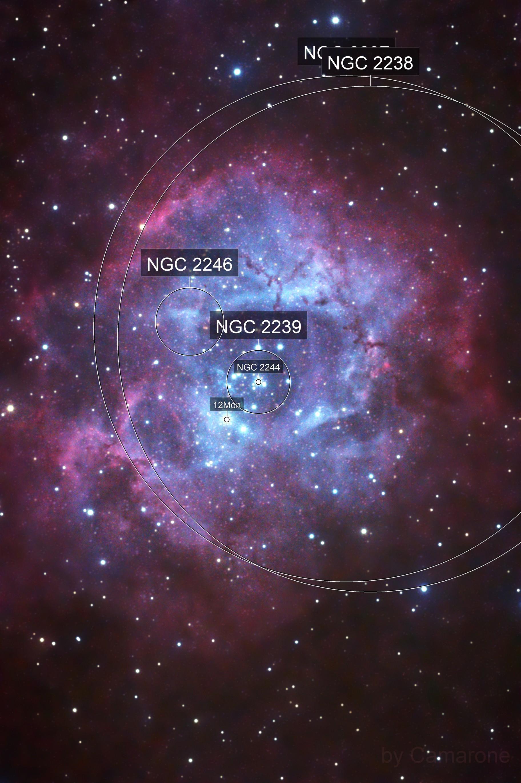 NGC 2244  Open Cluster & Rosette Nebula