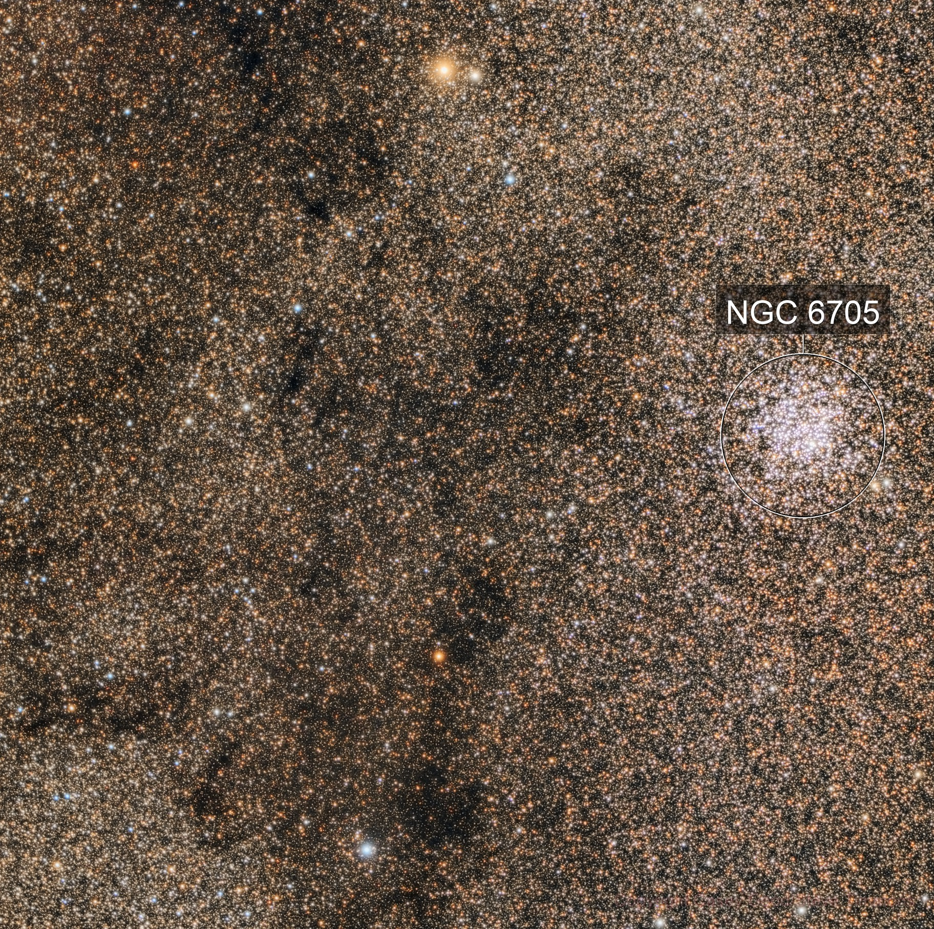 Messier 11 in a sea of stars