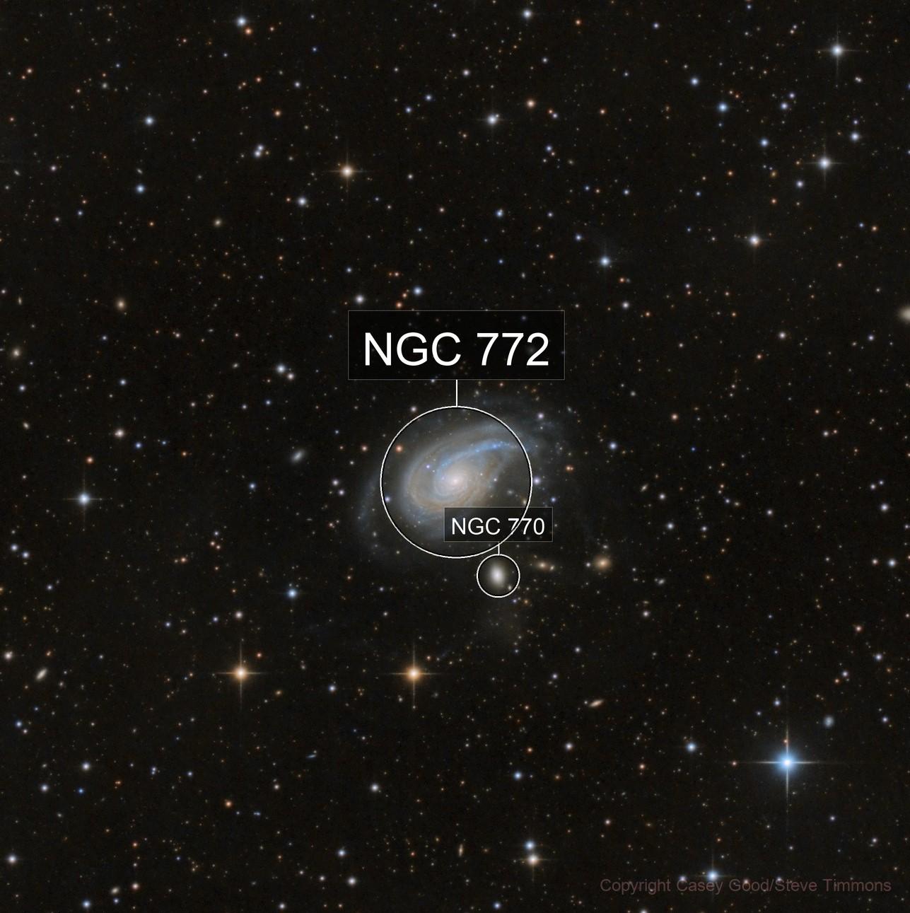 NGC 772 - The Nautilus Galaxy