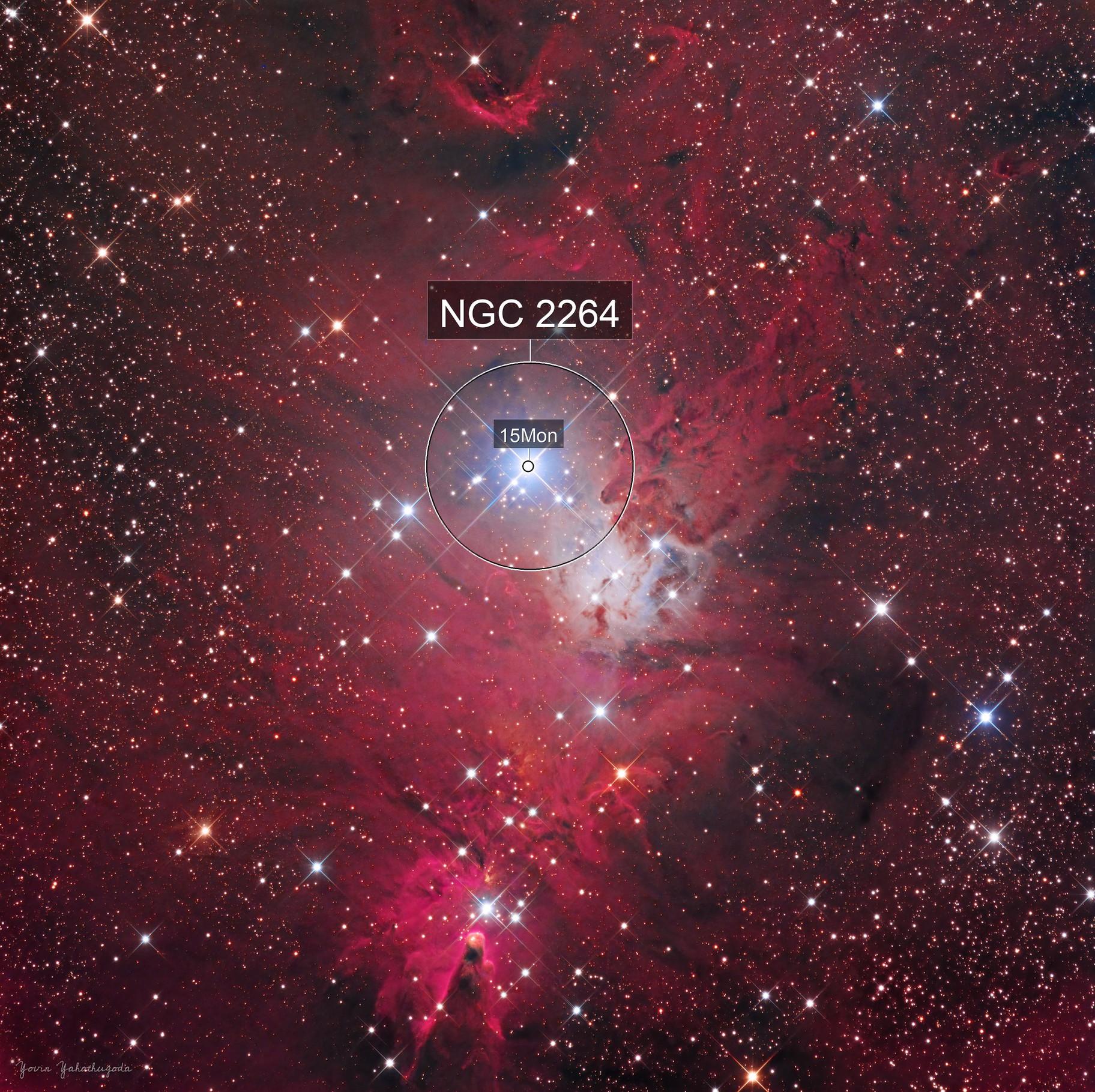 NGC 2264 - Christmas Tree Cluster & Cone Nebula