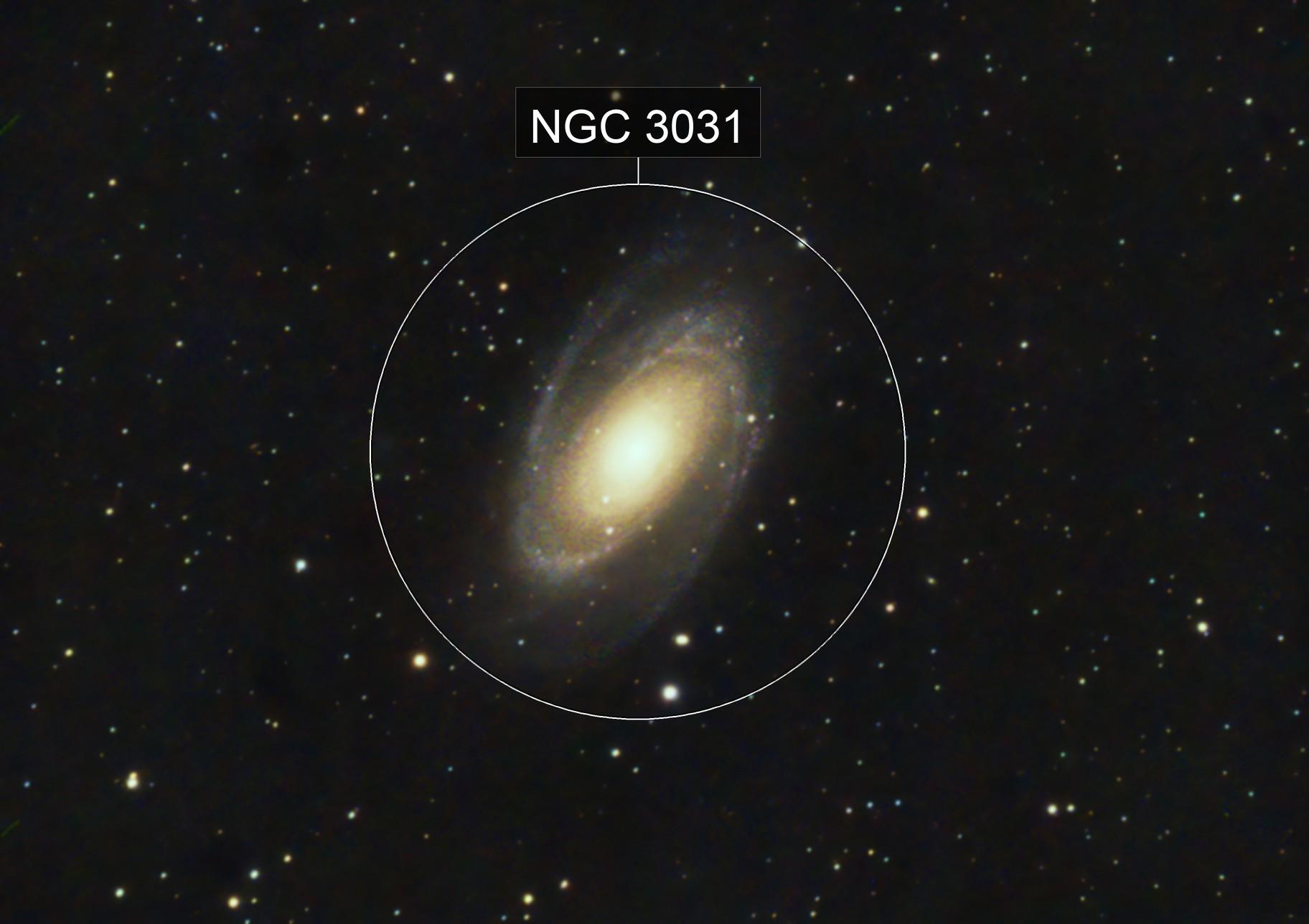 Bode Galaxy M81
