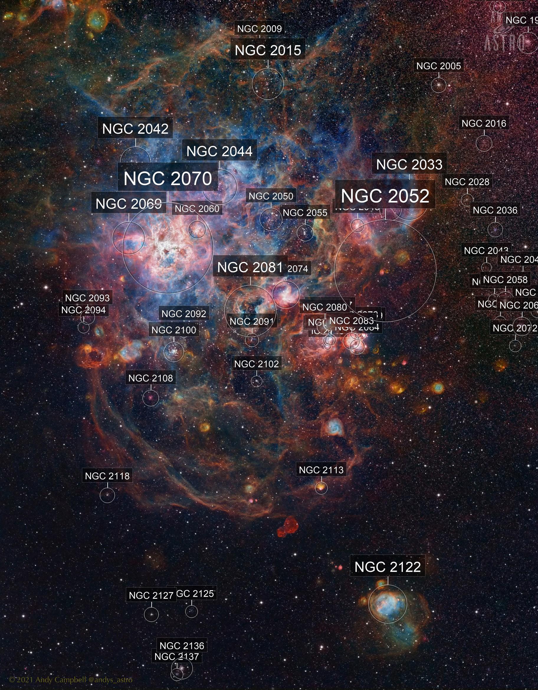 Arachnophobia - NGC 2070 in Narrowband