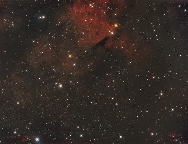 Barnard 347