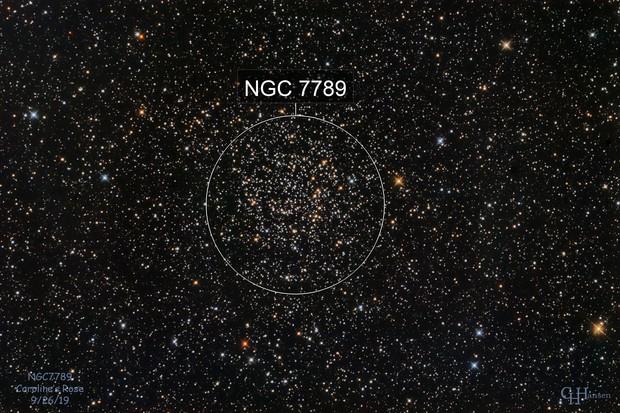 NGC7789 - Caroline's Rose