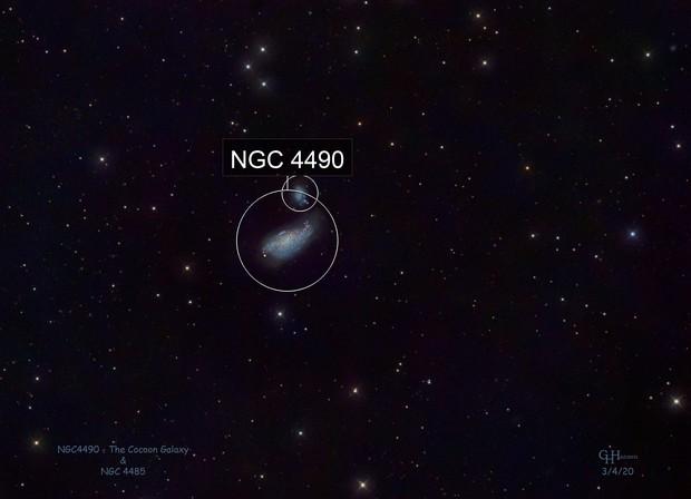 NGC4490 - The Cocoon Galaxy & NGC4485