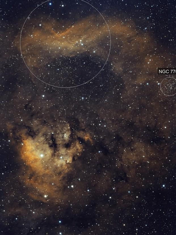 Ced 214 / NGC 7822