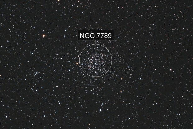 Caroline's Rose Cluster, NGC 7789