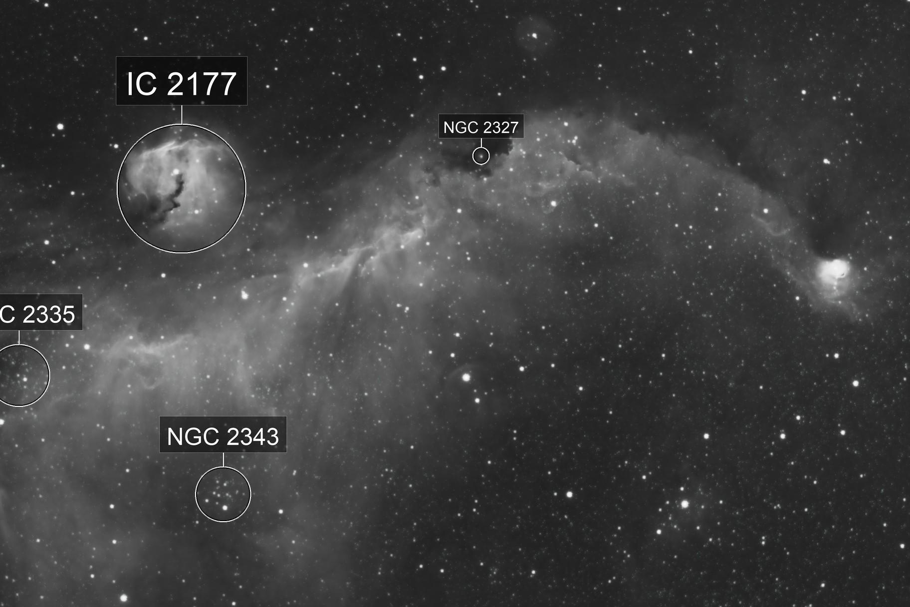 IC 2177, The Seagull Nebula