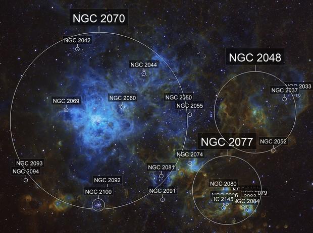 Tarantulla Nebula (NGC 2070)